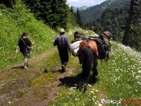 Trekking z plecakami na koniu - zdjęcia z Gruzji