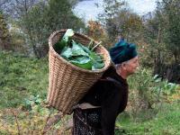 Kobieta pracująca w ogrodzie - ilustracja do przypowieści gruzińskiej