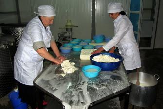 Krojenie młodego sera na sulguni - Naili i Inga, fabryka sera w Saqdrioni