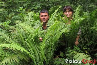 W poszukiwaniu dzikich roślin - Zwiadi i Anna, Gruzja