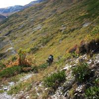 Droga przez przełęcz, Góry Swaneckie