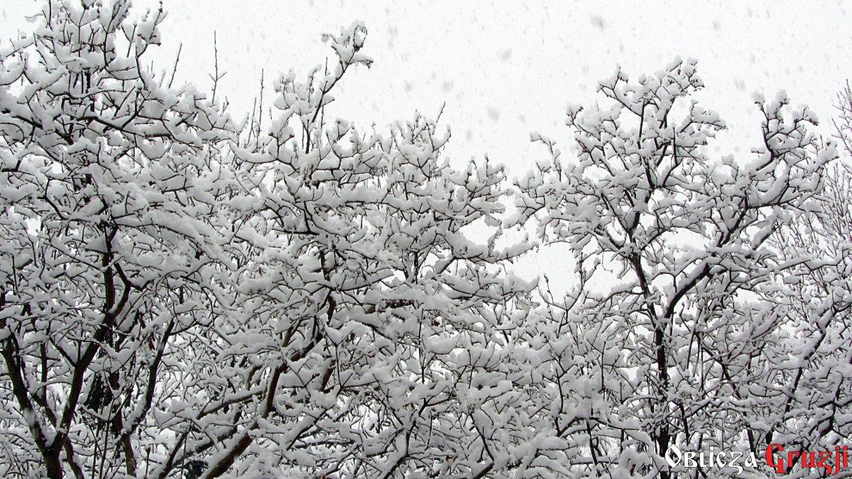 Zima Poezja Gruzińska Oblicza Gruzji